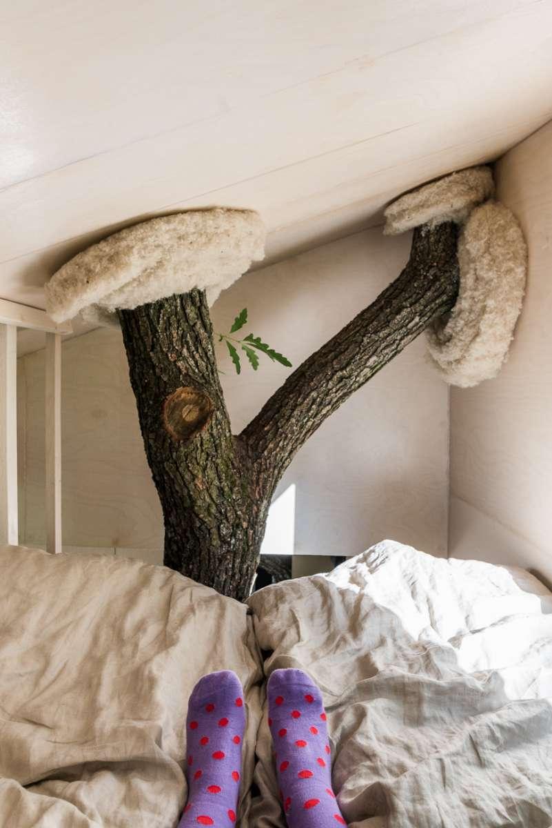 Ako izolačný materiál najlepšie poslúžila ovčia vlna ktorá súčasne zútulňuje interiér.