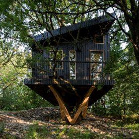 Architekt Paľo Šiška navrhol dom akoby obtočený okolo mohutného kmeňa.