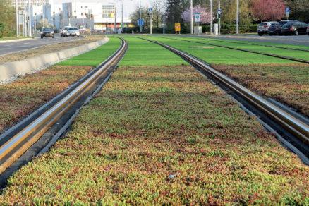 Za povšimnutie stojí aj ekologická a estetická stránka projektu – Košice majú tichú trať, ktorá zároveň pozitívne ovplyvňuje zvlhčovanie vzduchu a prachu vo svojom okolí.