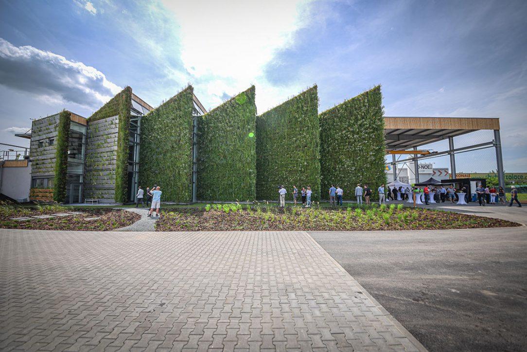 Zelená fasáda so sebou prináša rovnaké výhody ako strecha je však viac na očiach