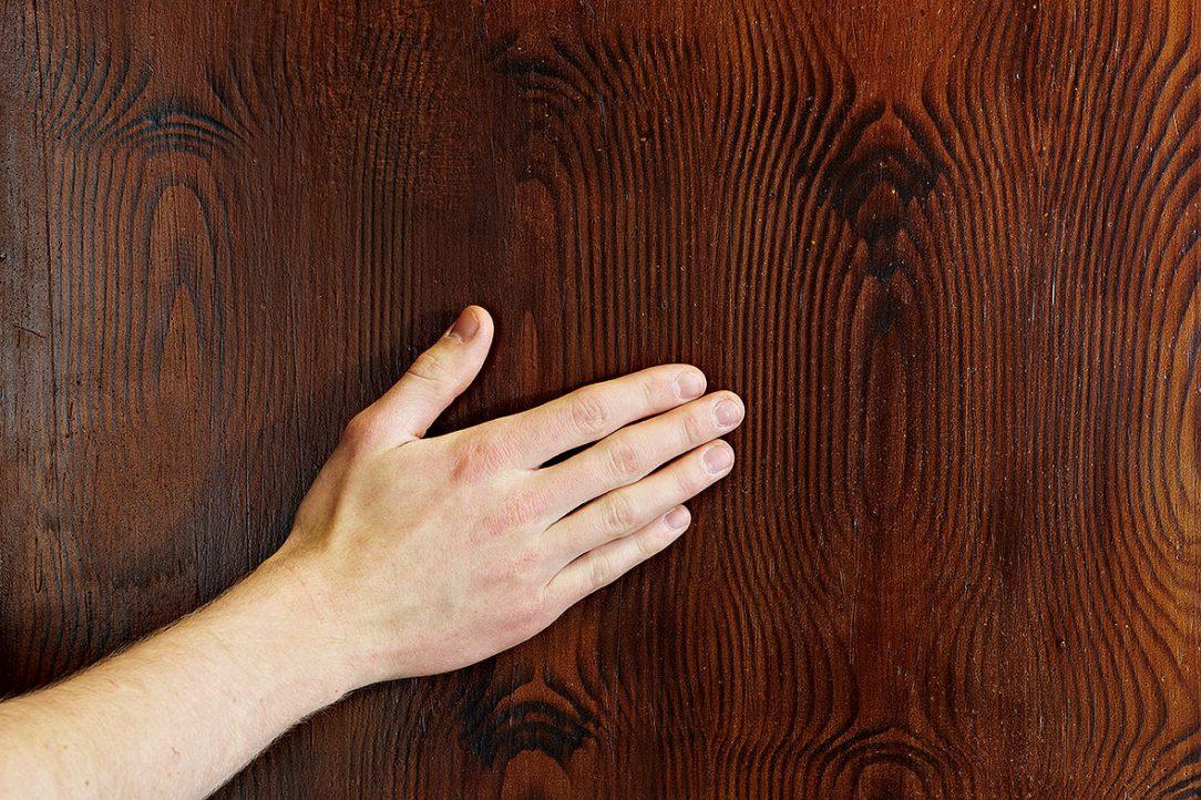 05 Štruktúra dreva