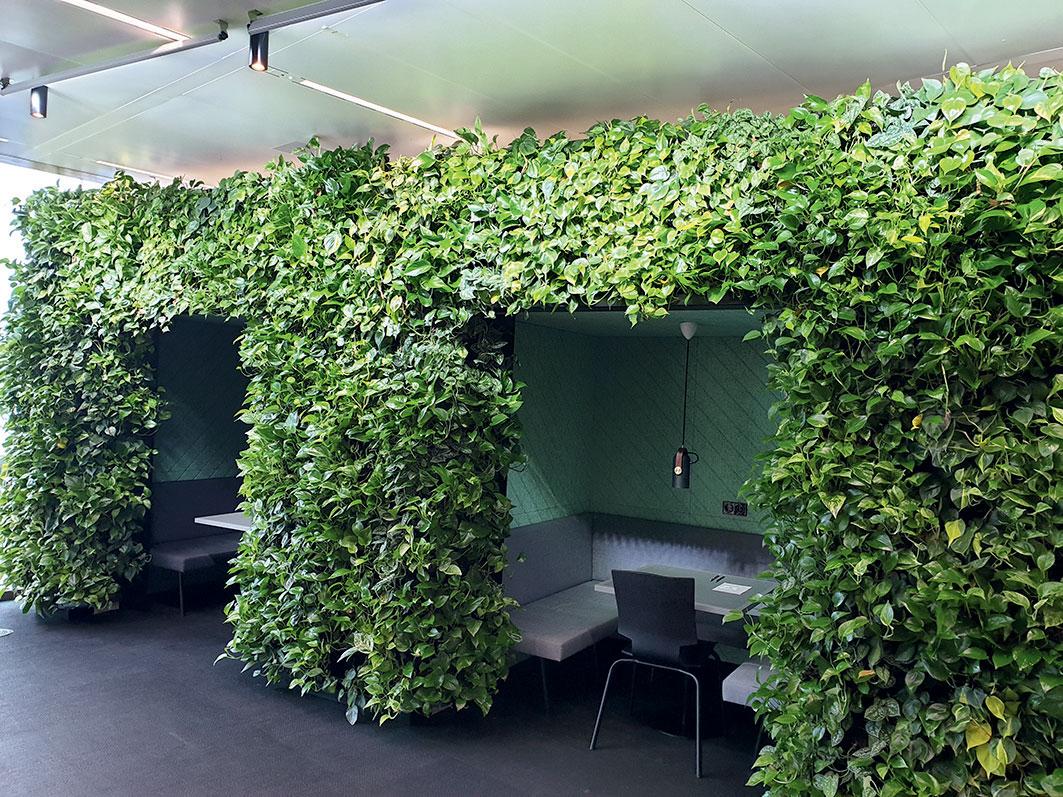 Príklad využitia rastlín v budovách biofilický dizajn pracovného priestoru v zelenej budove Olympic Edge v Amsterdame