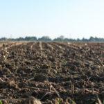 pôda, pozemok