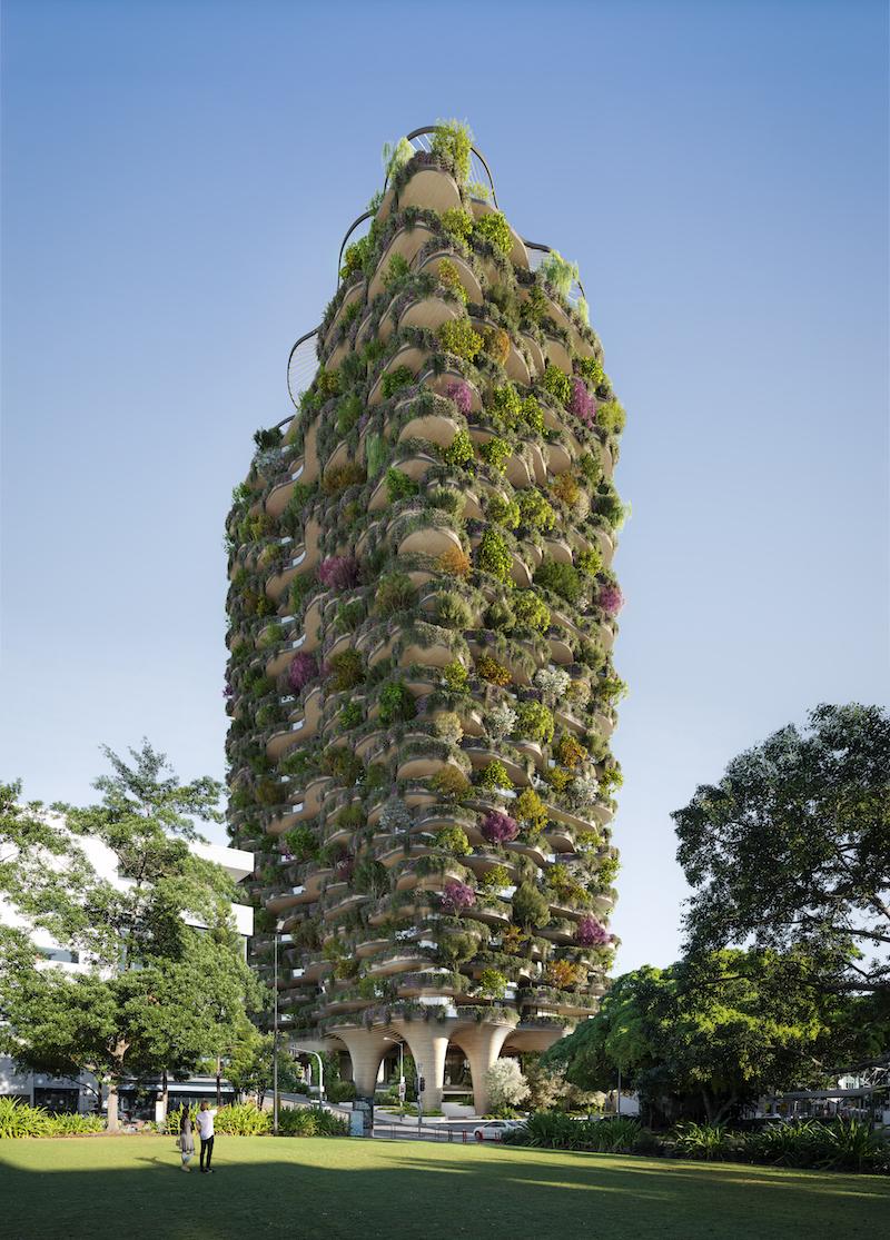Zavlažovanie rastlín má na starosti automatický systém.