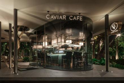 Kaviareň je v objatí stromov doslovne – majú svoje miesto aj v hmote prístrešku.