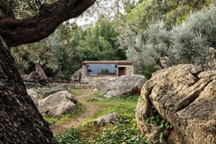 Olivový dom.