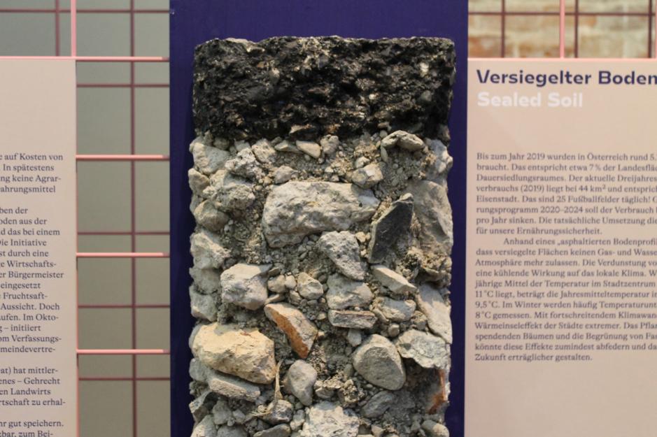 Jeden z vizuálnych prvkov výstavy sú rôzne typy pôd v Rakúsku s ich popisom.
