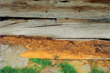 drevostavby a zivotnost poruchy chyby rekonstrukcie