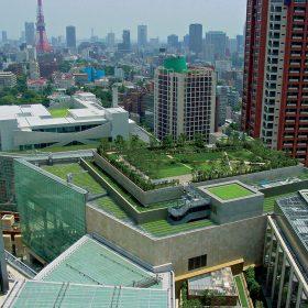 matematika zelenych budov
