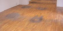 Poruchy drevených podláh