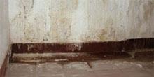 Poruchy vodotesných izolácií spodnej stavby a ich eliminácia
