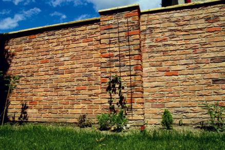 Príroda na stenách apodlahe