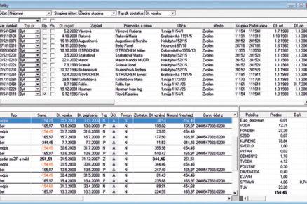 Softwarehouse pre veľkých klientov