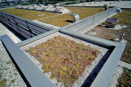 Vegetačné strechy bez obáv